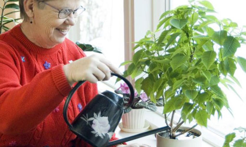 Una señora riega sus plantas y hace saltar la alerta roja por fuertes lluvias